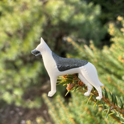 Německý ovčák ivory/vertigo starlight